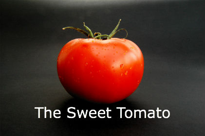 THE SWEET TOMATO