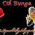 Header Blog Percuma Untuk Cik Bunga