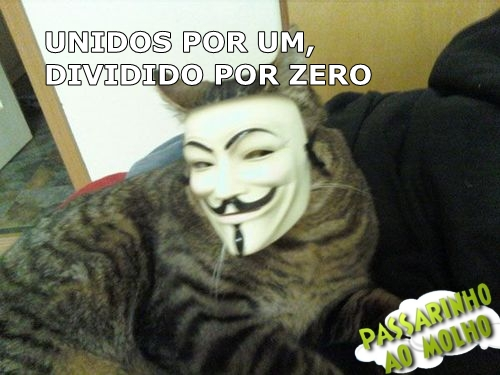 gato com a máscara da anonymous, anonymous, passarinho ao molho, máscara