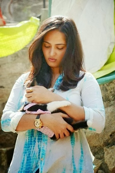 Anushka pics With Dog