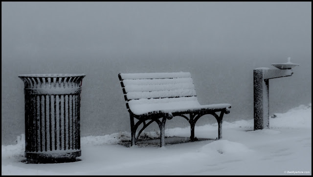 Trash can, park bench and water cooler in snow || Black and White