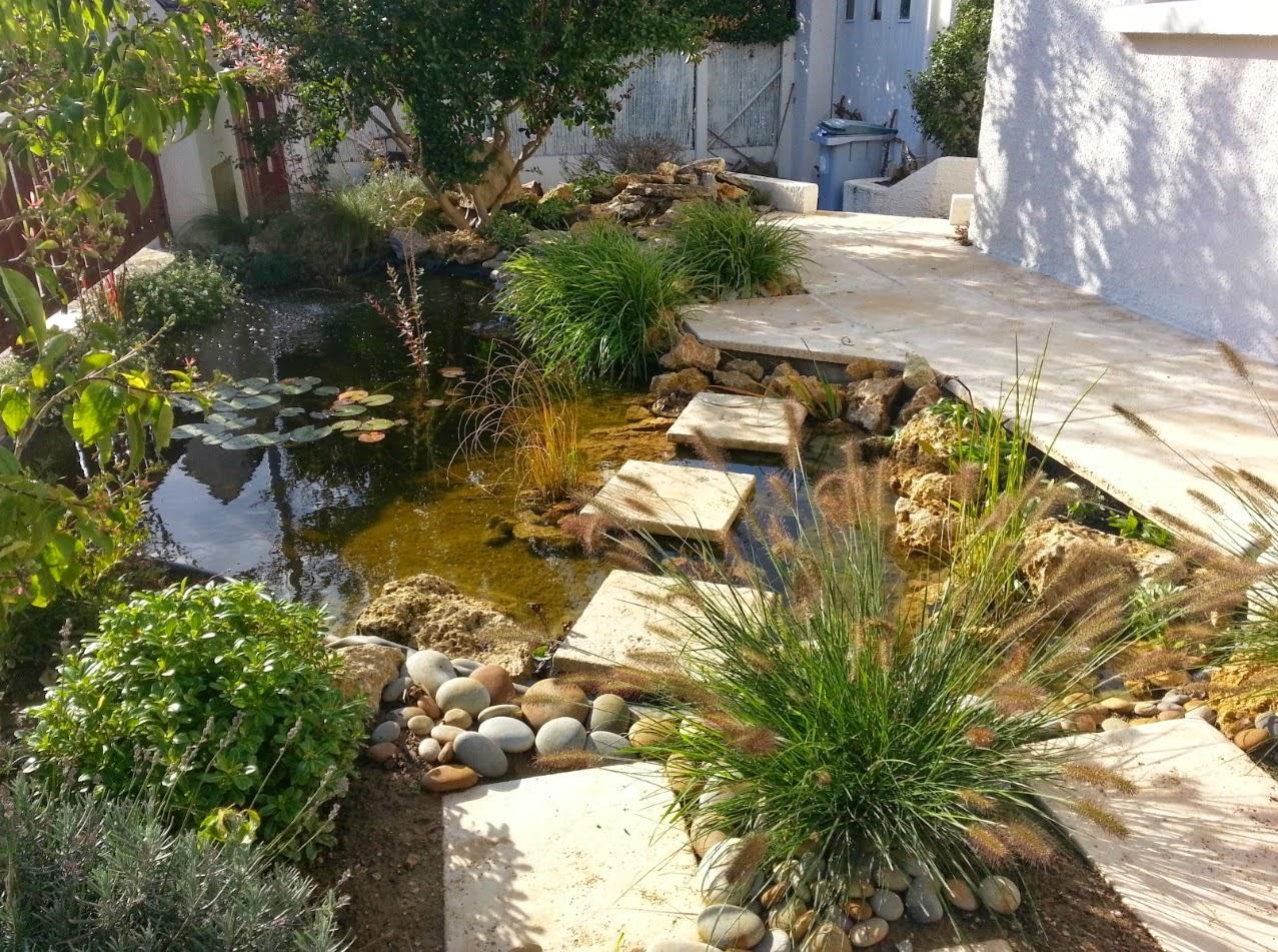 Bassin et terrasse dans un petit espace paysagiste val d - Petit jardin avec bassin ...