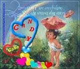 Candy maggio