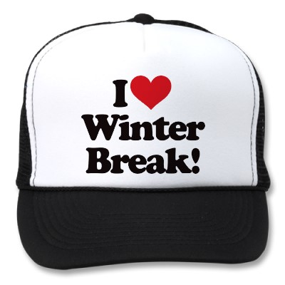 how i spent my winter break essay I hope whatever you chose to do, the time spent was enjoyable and  my winter  vacation started on friday december 23rd  nice essay.