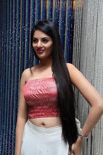 Jinal Pandya Hot Photos