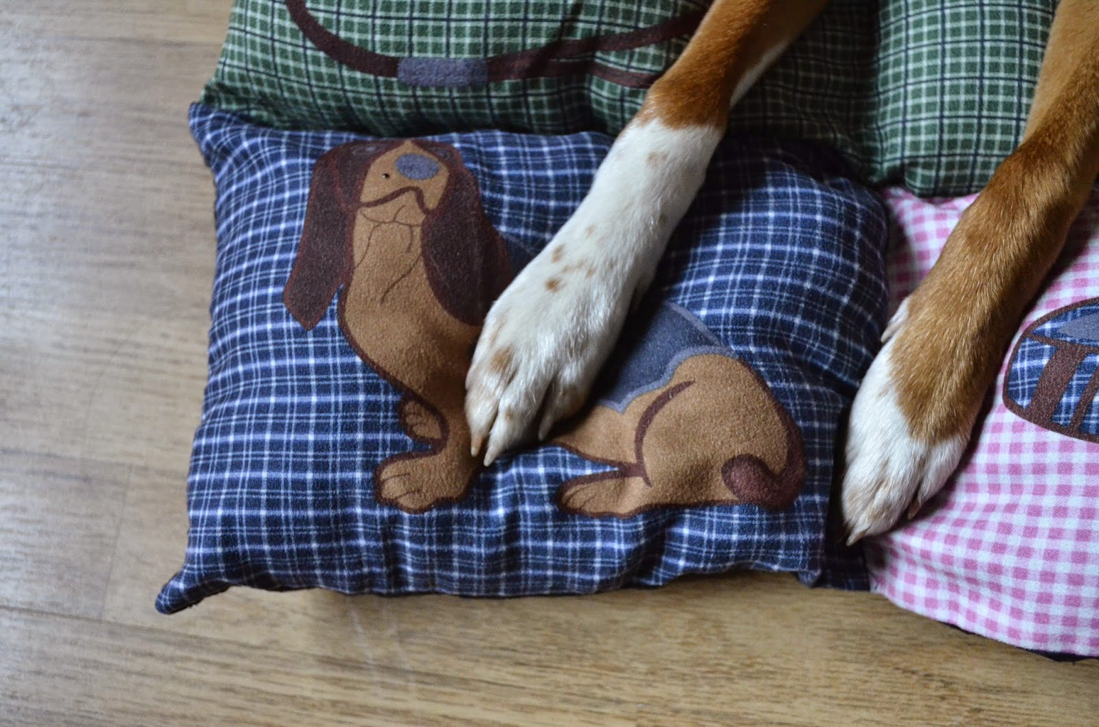 Just in Style puppy bed from groupon