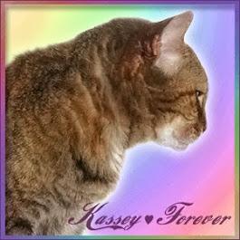 Forever, Kassey