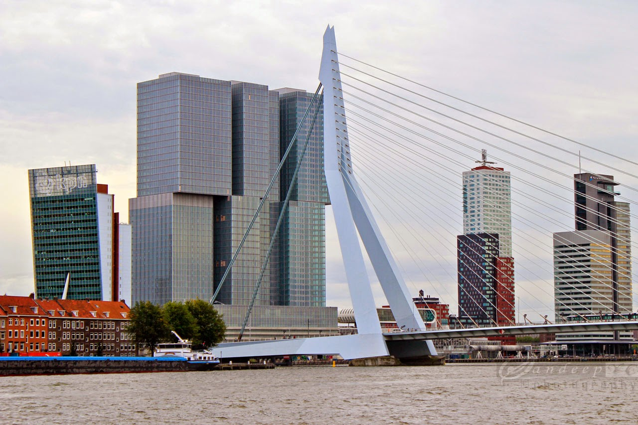 Skyscrapers of Kop Van Zuid
