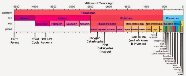 Full Linear Timeline of Life on Earth