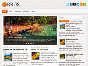 Bros - Free Wordpress Theme