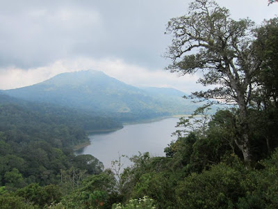 Morning View of Tamblingan Lake North Bali