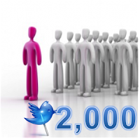 buy twitter followers bulk prices