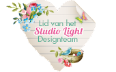 DT Lid Studio Light