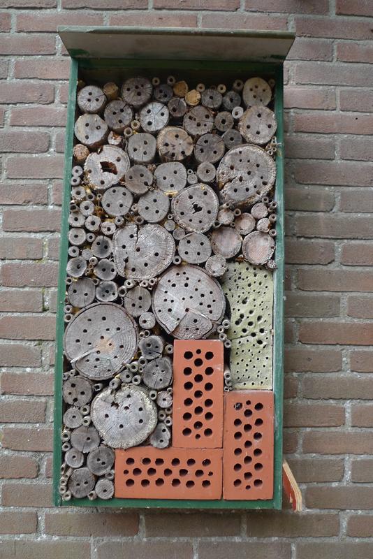 http://www.flickr.com/photos/debrasolomonvanculiblog/3839773938/