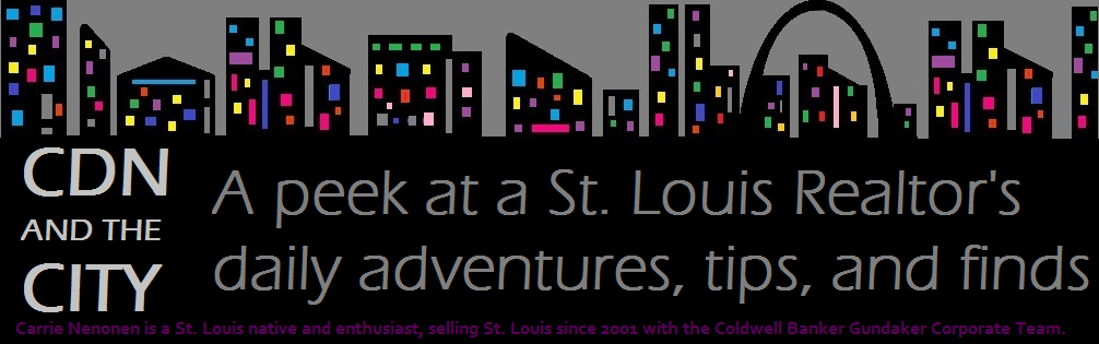 A St. Louis Realtor's Adventures, Tips, and Finds