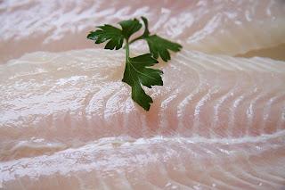 peixe, peixes, peixe panga, receita peixe panga, panga peixe, peixe panga origem, fotos do peixe panga, piscicultura, peixe frito, peixe, camarão, peixes ornamentais, peixe beta, peixe dourado, peixaria, peixe pirarucu, peixe ur, peixe pango, bagre, peixaria, peixe panga fotos, peixe panga contaminado, origem do peixe panga, peixe contaminado, receita com peixe panga, peixe panga receita, peixe pangas, peixe panga assado, peixe panga tem escamas, fotos peixe panga, receita de peixes, receita de peixe
