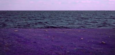 Bluwan Landscape