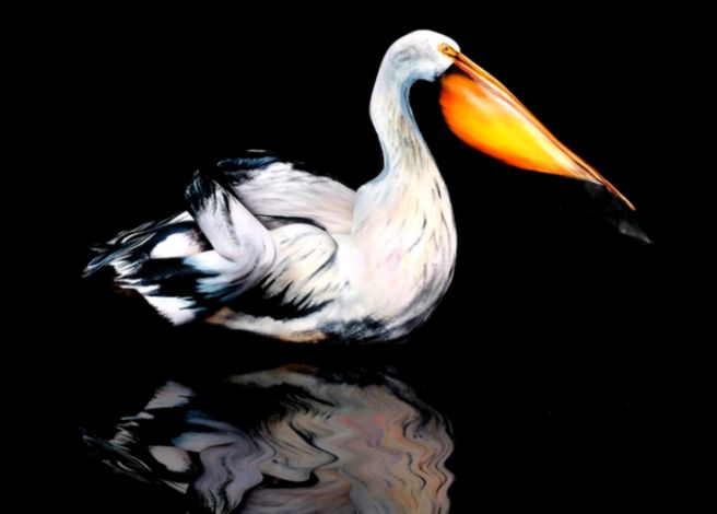 15 Body Paintings of Animals That Completely Hide the Humans   My