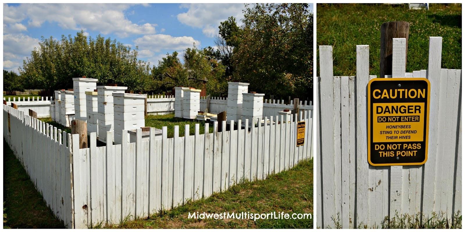 MML beekeeping Kline Creek
