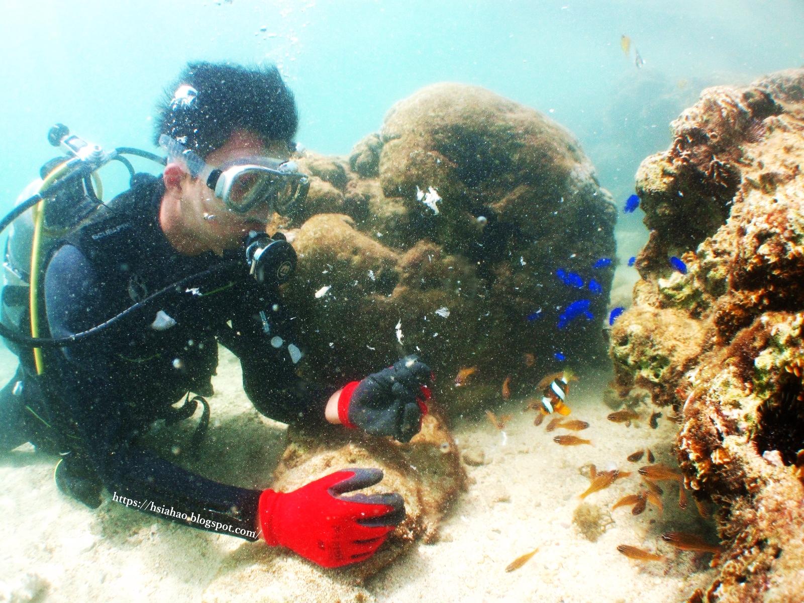 沖繩-景點-推薦-青之洞窟-潛水-浮潛-青の洞窟-自由行-旅遊-Okinawa-diving-snorkeling-maeda-cape-blue-cave