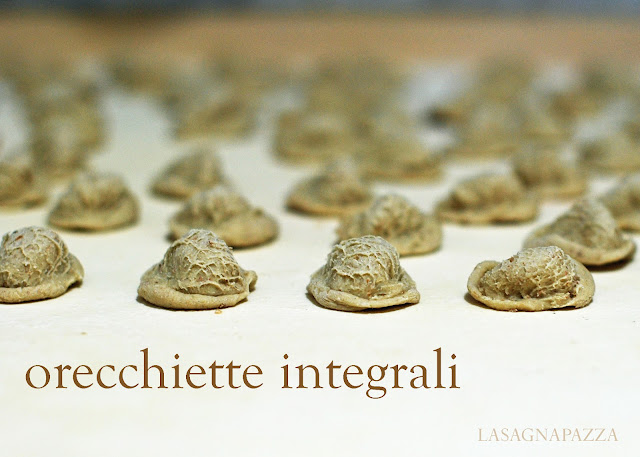 http://lasagnapazza.blogspot.it/search/label/orecchiette