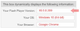 Adobe Flash Player Version Check 1