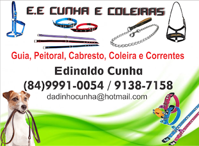 http://sistemacaico.com/eeconhaecoleiras/