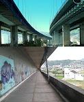 Abaixo-assinado da passarela da ponte Pedro Ivo Campos