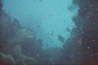 Tulamben : les fonds sous-marins