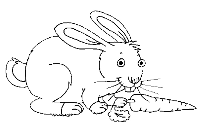 صورة أرنب يمسك بجزرة ليبدأ أكلها مفرغة