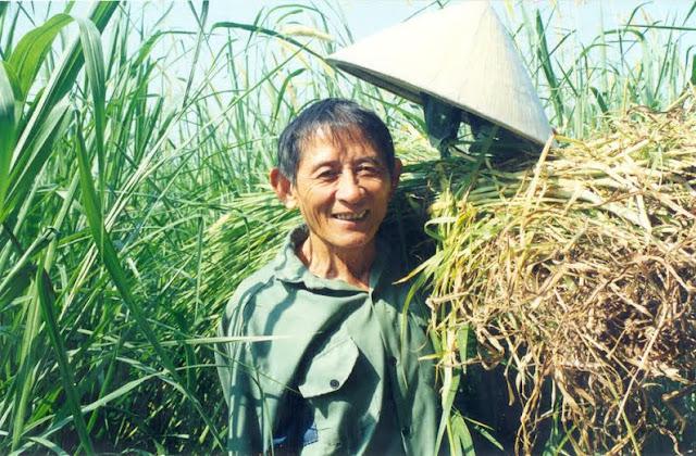 Vĩnh biệt người anh hùng Hồ Giao giữa cỏ