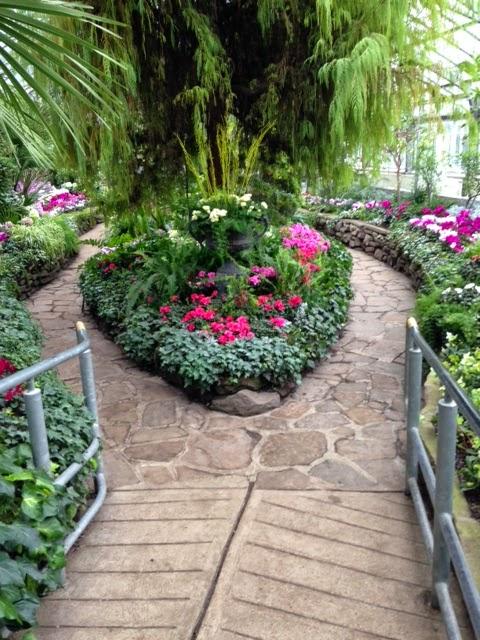 Allen Gardens Greenhouse Toronto