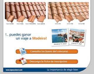 concurso construcción del mejor tejado
