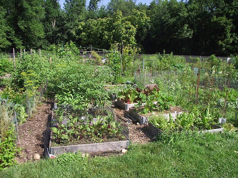 Morris County Park Commission's Community Garden