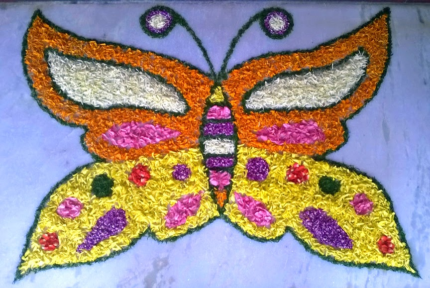 Butterfly pookalam