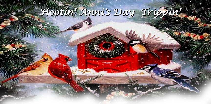 Hootin' Anni's Day Trippin'