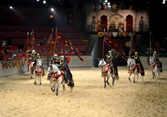 Atlanta Animal Lovers Tour, Medieval Times Dinner & Tournament