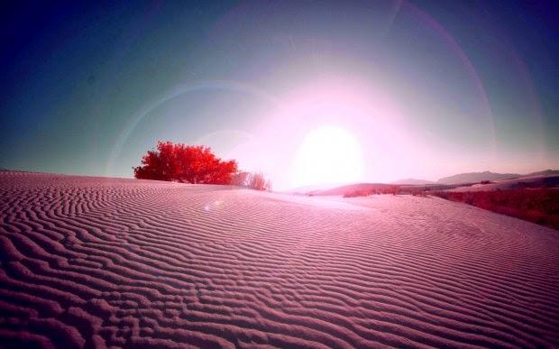 Album hình ảnh đẹp: Vẻ đẹp của ánh nắng mặt trời