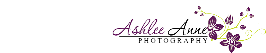 Ashlee Anne Photography, LLC.