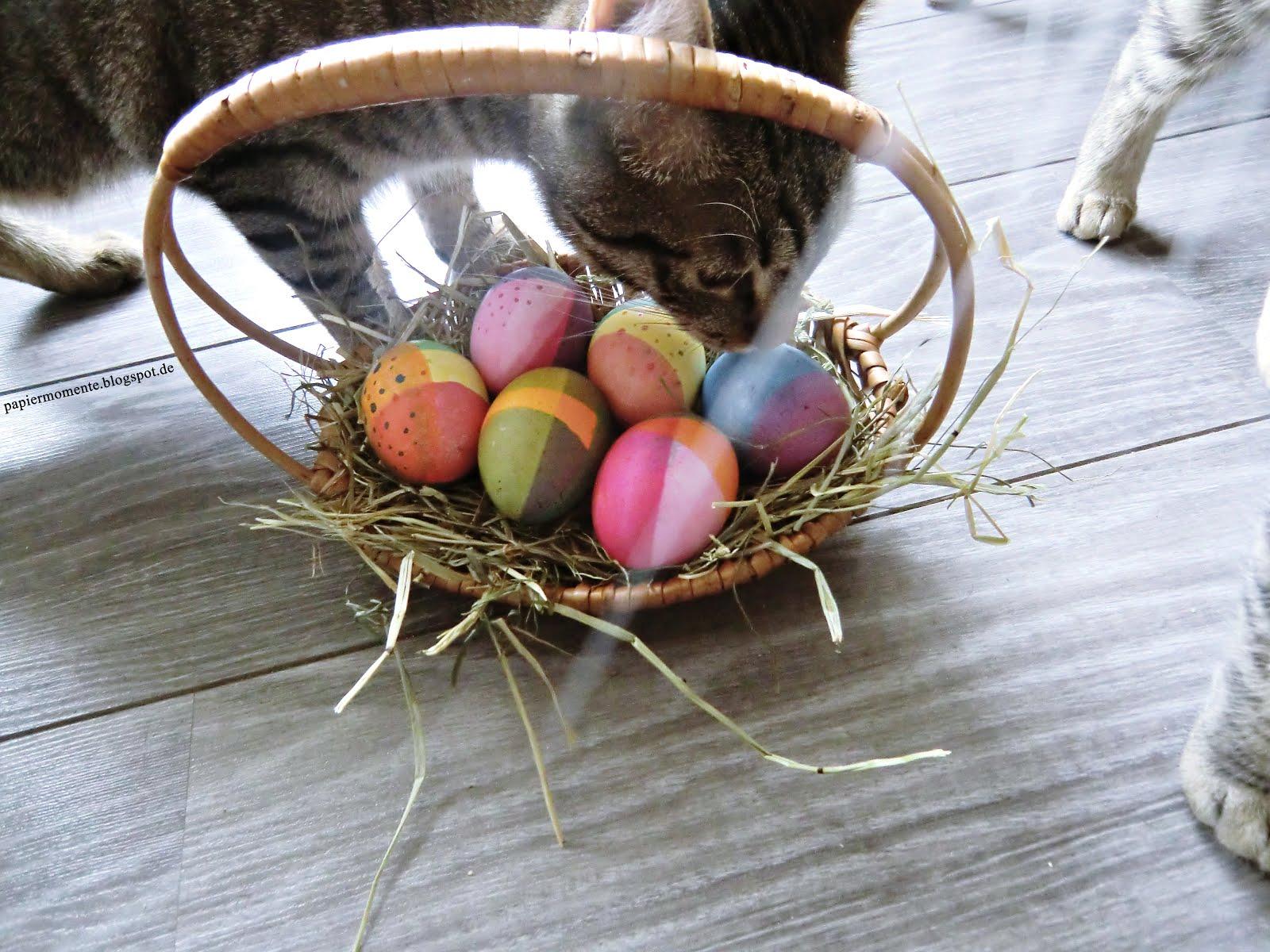 Wiola\'s Papiermomente .: Frohe Ostern! Hühner zum ausmalen.