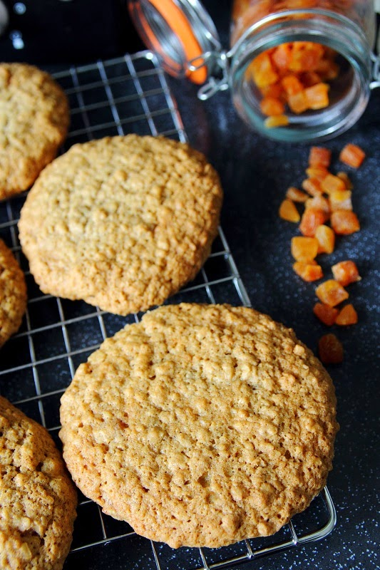 Deb's Dust Bunny: Oat and Apricot Cookies