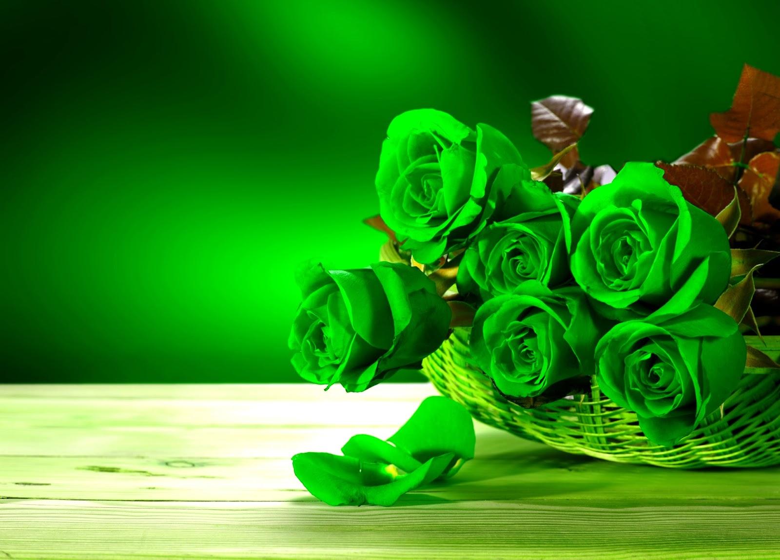Kopi Hangat Foto Bunga Mawar Yang Cantik