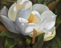 International Floral Painting Showcase