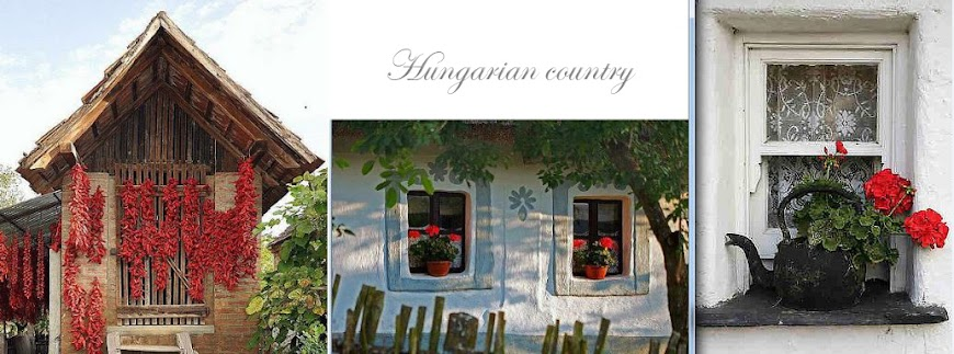 Hungarian country
