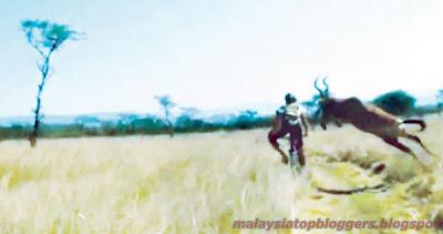 Antelop Rempuh Pelumba Basikal