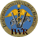 International Wildlife Rescue