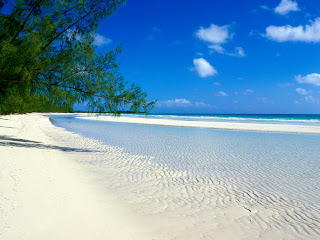 Beach free desktop wallpaper 0010