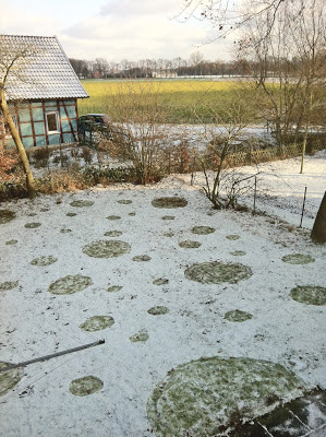 A back garden covered in snow that has been decorated with spots where the snow has been trodden under foot.