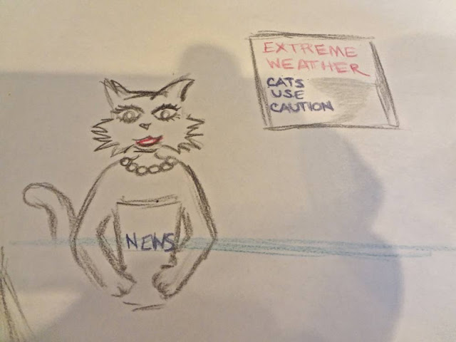 drawing of cat as news anchor
