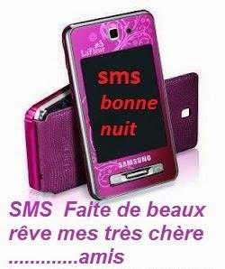 SMS  Faite de beaux rêve mes très chère amis